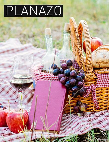 picnic-web-440x575