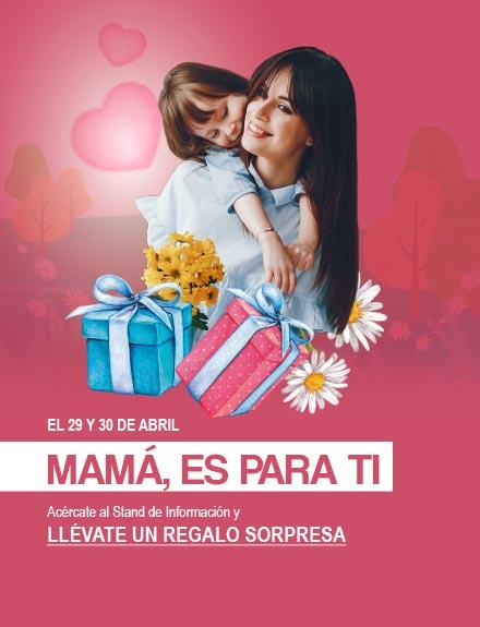 Noticia web dia de la madre